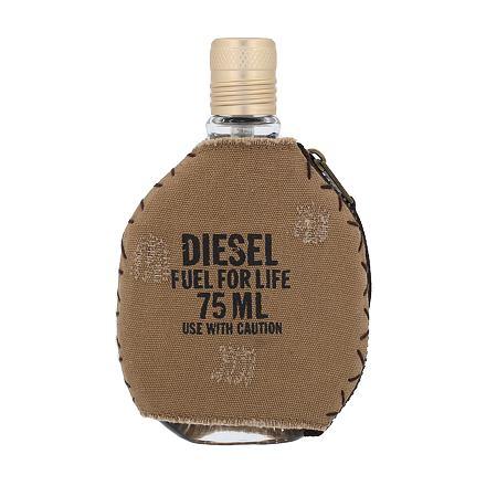 Diesel Fuel For Life Homme toaletní voda pro muže