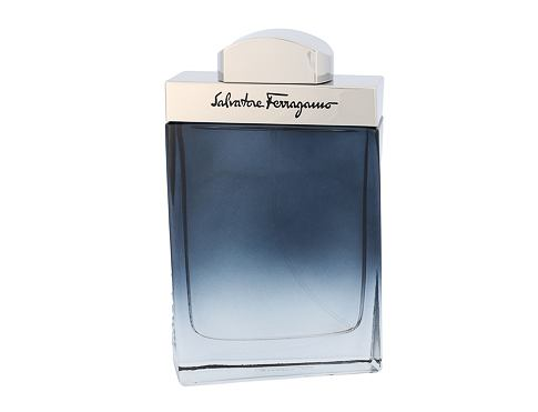 Salvatore Ferragamo Subtil Pour Homme EDT 100 ml pro muže